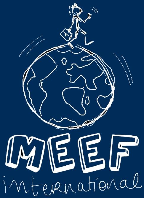 Master MEEF International