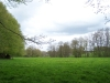 smallforest_fieldwork5